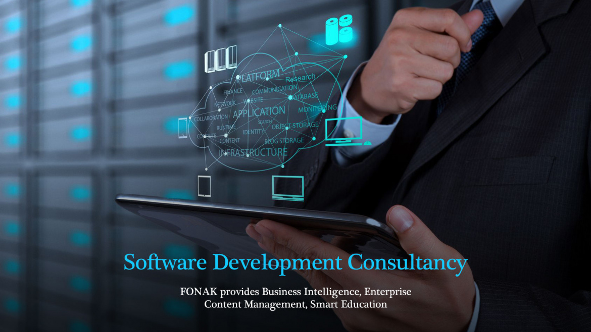 Software Development Consultancy